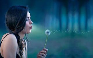 Бесплатные фото девушка, одуванчик, парк