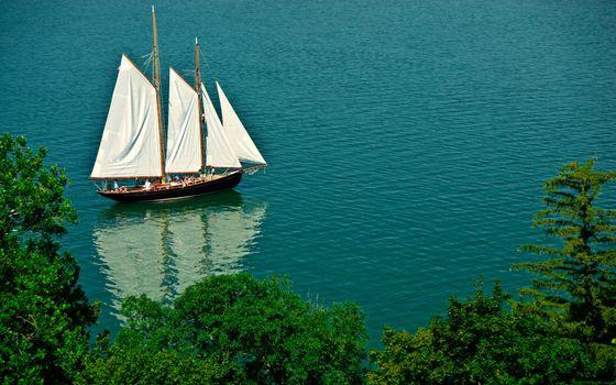 Бесплатные фото деревья,листва,море,судно,мачты,паруса
