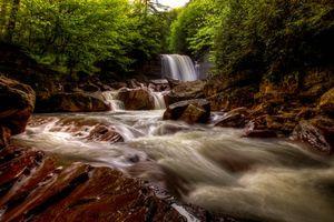 Бесплатные фото Douglas Falls,North Fork Blackwater River,West Virginia,водопад,река,лес,деревья