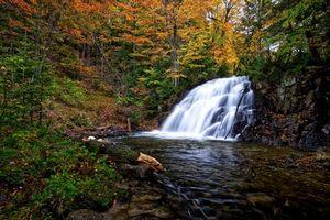 Бесплатные фото robertson creek falls,vankoughnet township,ontario,водопад,лес,деревья,природа