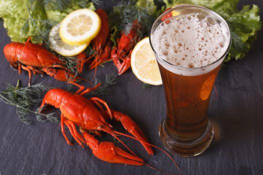 Photo free crawfish, drink, beer