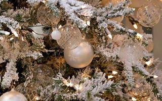 Бесплатные фото Новогодние прозрачные шары,еловые ветки,снег,гирлянды