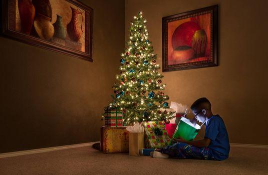 Бесплатные фото новогодние подарки,елка,мальчик,праздник