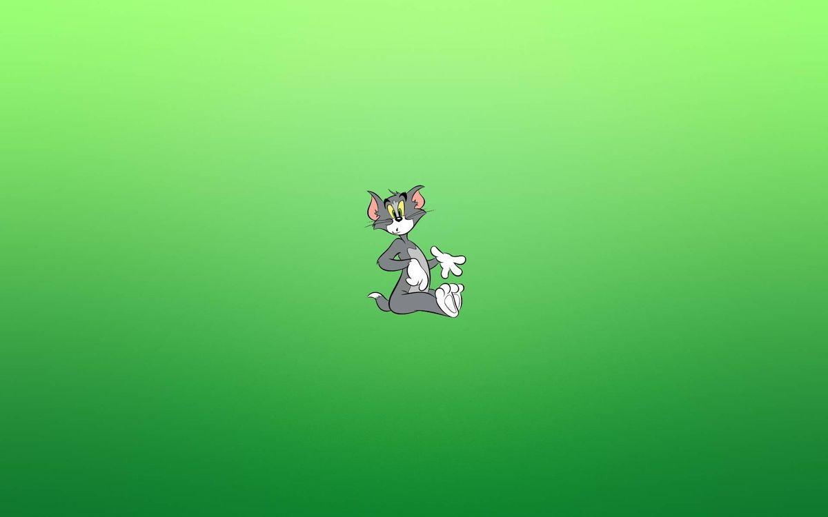 Фото бесплатно Том, кот, гримаса, минимализм, фон зеленый, мультфильмы