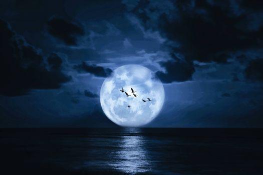 Фото бесплатно большая Луна, чайки, океан