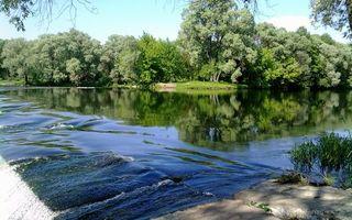 Бесплатные фото река,течение,платина,берег,деревья,трава,небо