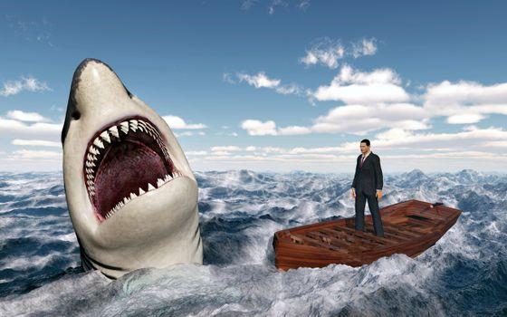 Photo free danger, shark, predator