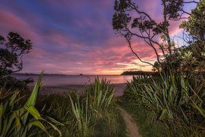 Фото бесплатно New Zealand, Coromandel, морской пейзаж