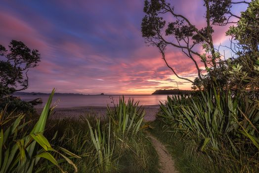 Заставки New Zealand, Coromandel, морской пейзаж
