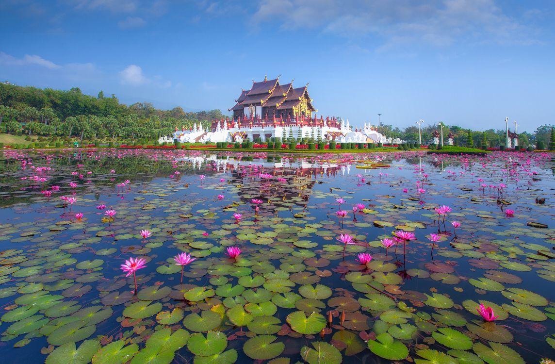 Фото бесплатно Традиционная тайская архитектура в стиле Ланна, Королевский павильон, Хуа Кум Луанг в Royal Flora Expo - на рабочий стол