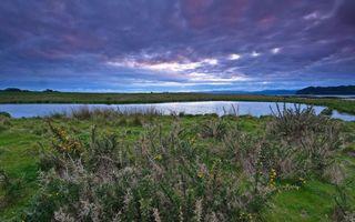 Заставки берег,трава,озеро,горизонт,небо,облака