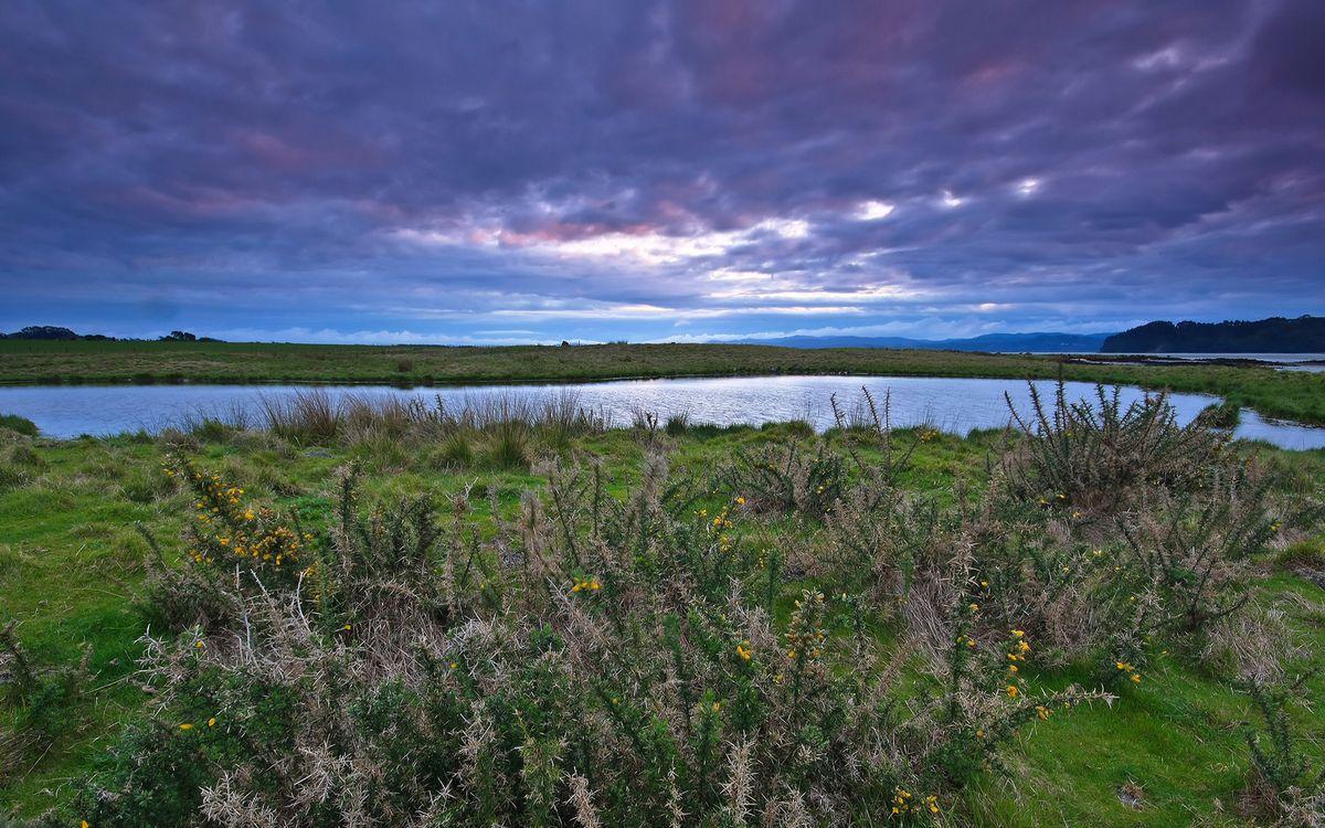 Фото бесплатно горизонт, небо, озеро - на рабочий стол