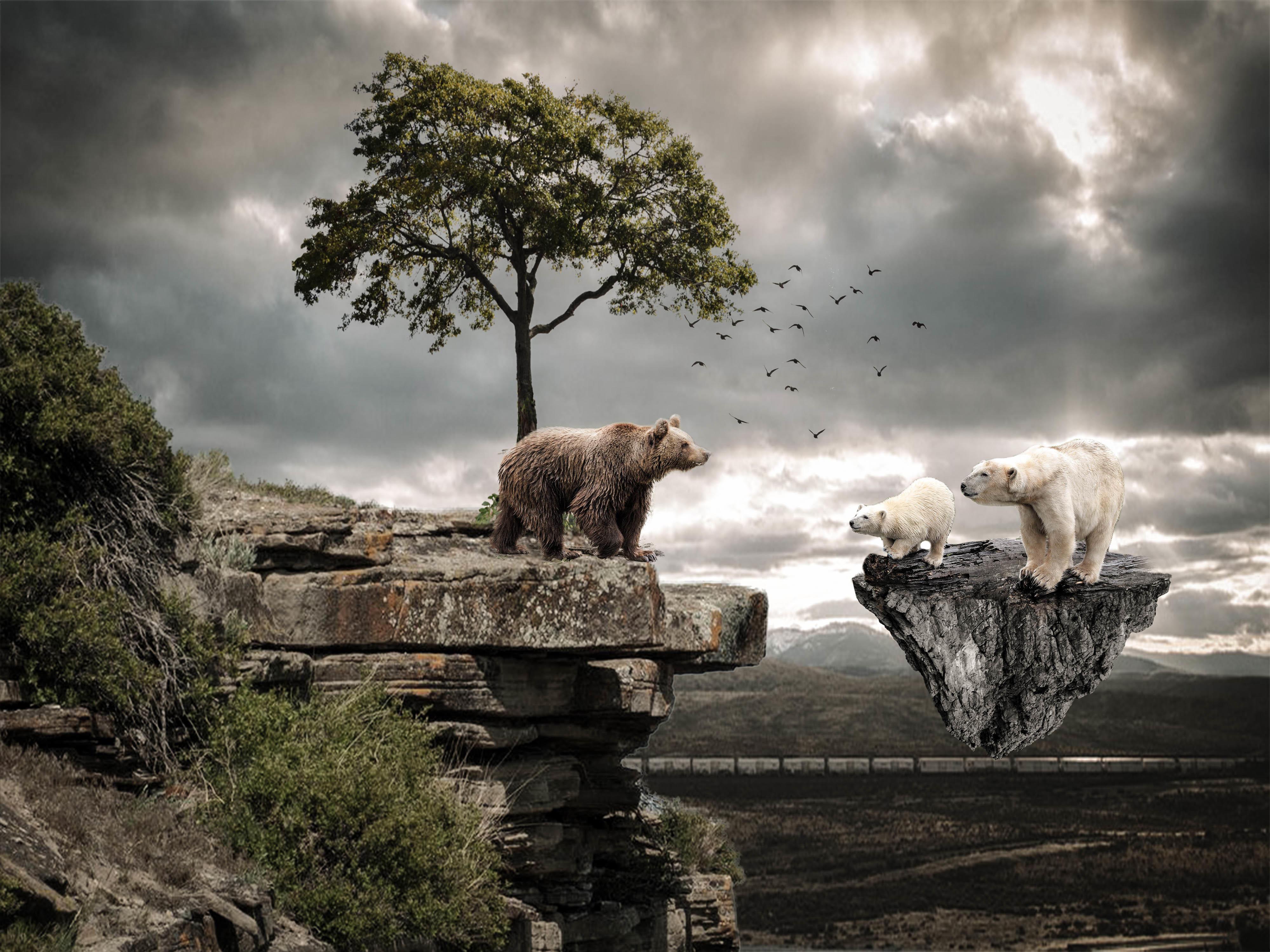 Обои скалы, летающий остров, медведи, фантазия