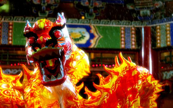 Бесплатные фото китай,дракон,цветной,узоры,символ