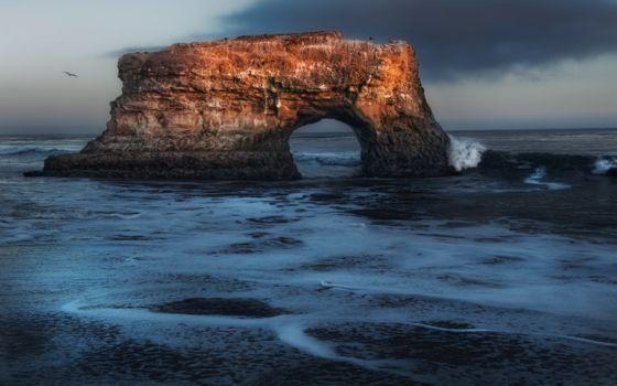 Photo free rock, seagull, sea