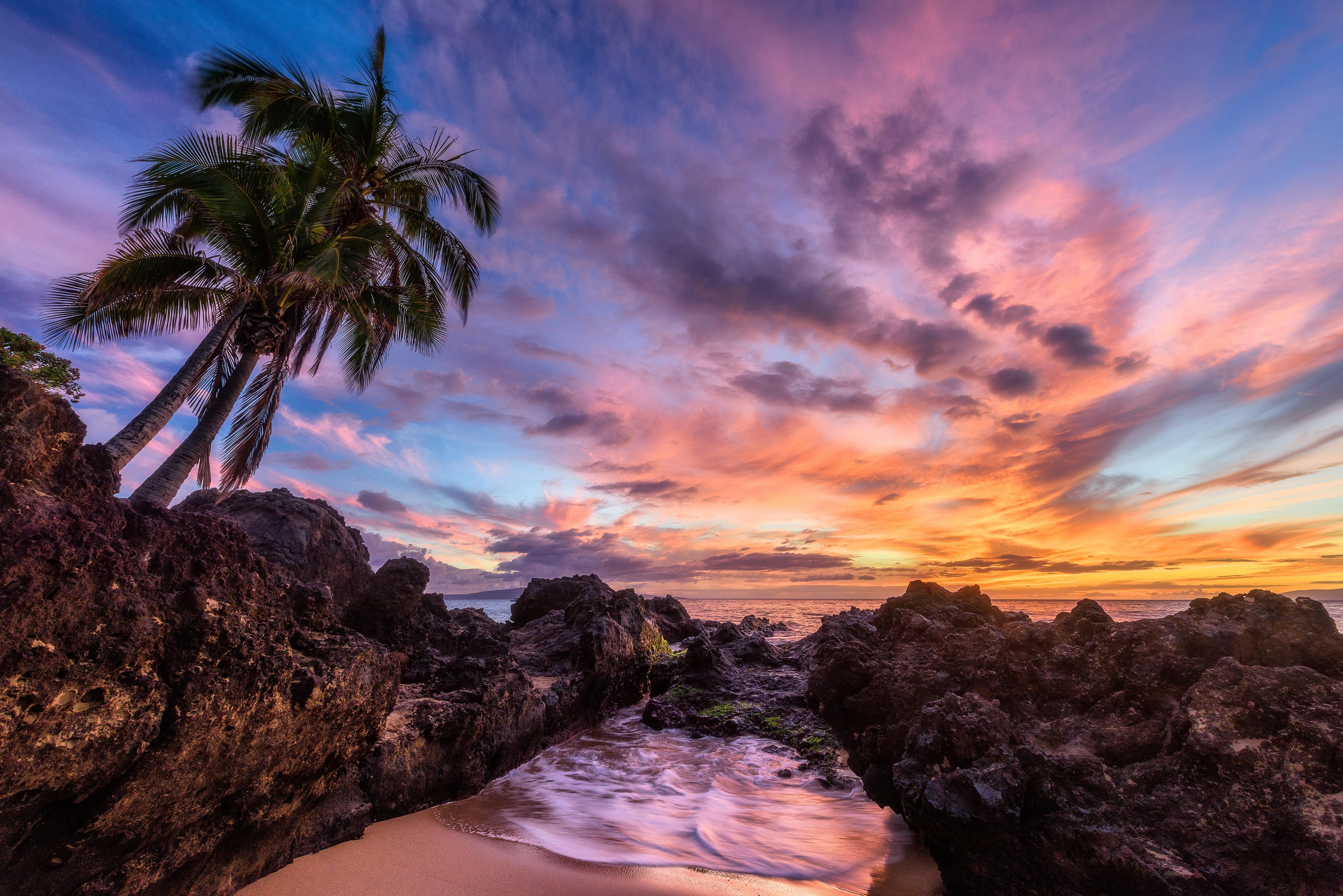 обои закат, море, пальмы, пейзаж картинки фото