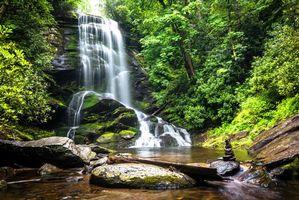 Фото бесплатно водопад, водоём, лес