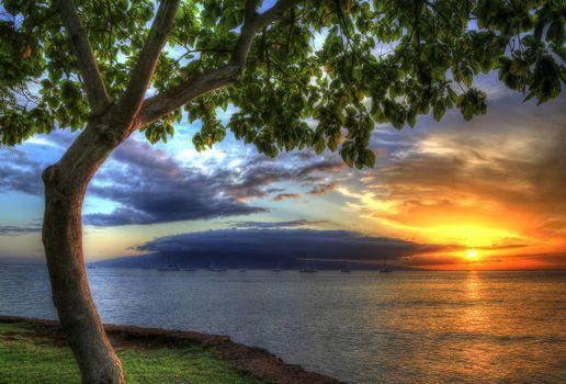 Фото бесплатно Гавайи, США, закат солнца