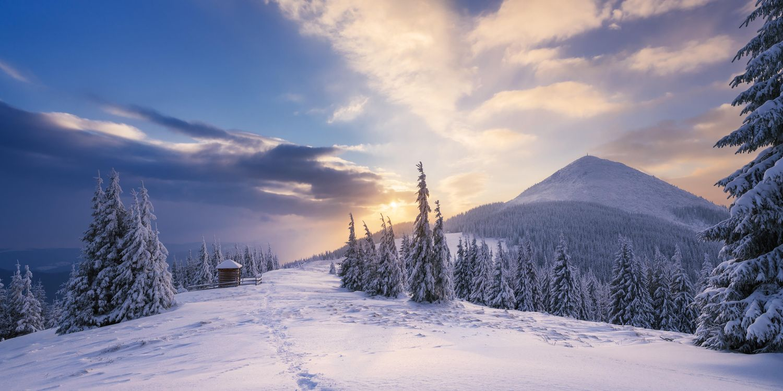 Обои зима, закат, снег картинки на телефон