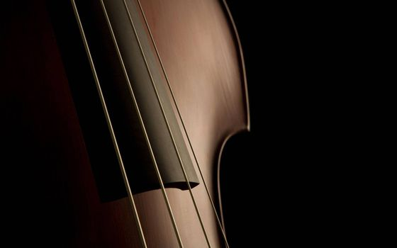 Photo free contrabass, body, strings