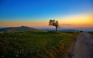 Бесплатные фото холмы,дорога,трава,дерево,поля,дом,небо