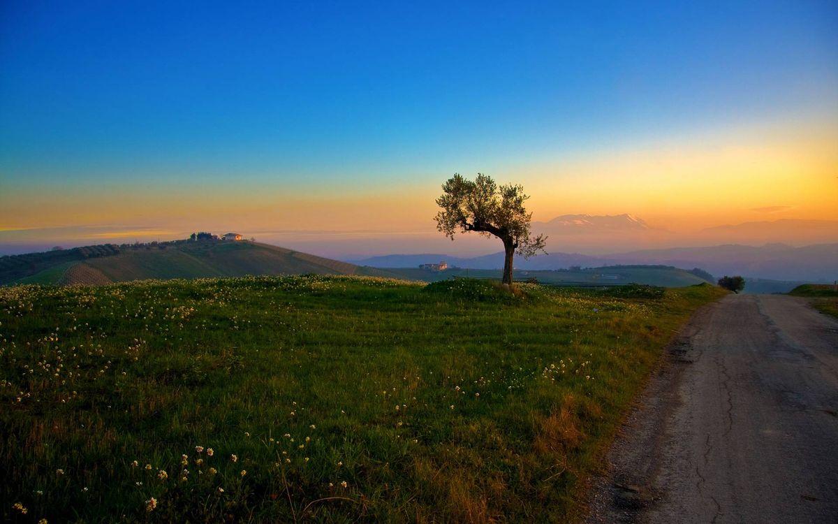 Фото бесплатно холмы, дорога, трава, дерево, поля, дом, небо, закат, пейзажи
