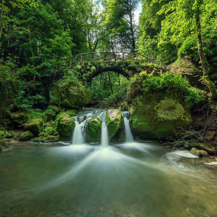 Фото бесплатно Люксембург, Швейцария, Мюллерталь, река, лес, деревья, мост, водопад, природа, пейзаж, природа