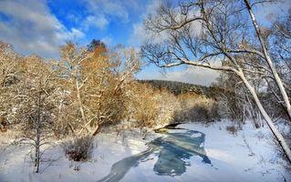 Фото бесплатно зима, река, лес