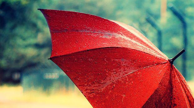 Фото бесплатно зонтик, раскрытый, красный