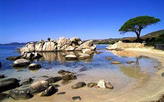 Бесплатные фото берег,камни,валуны,песок,дерево,море,небо