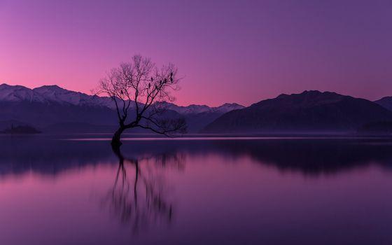 Заставки озеро,горы,дерево,утро