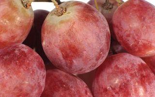 Заставки спелые, виноград, ягода