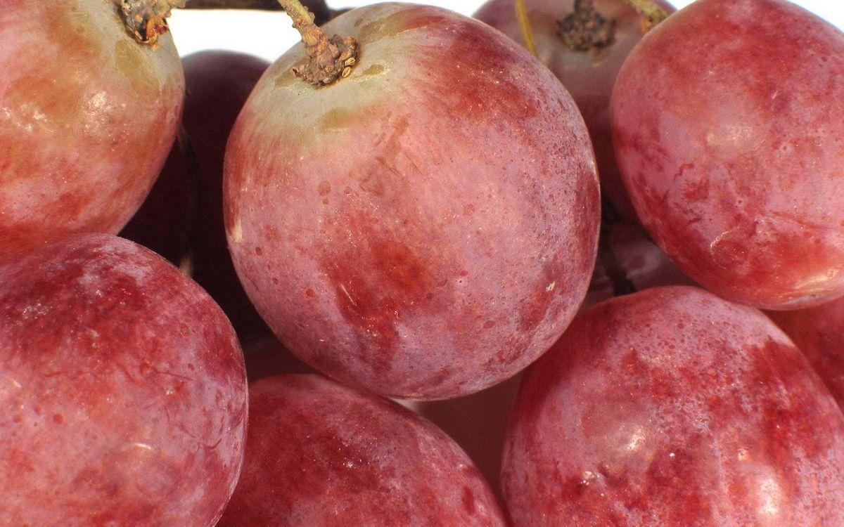 Фото бесплатно виноград, ягода, гроздь, спелая, еда