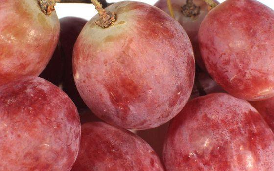 Фото бесплатно спелые, виноград, ягода