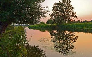 Бесплатные фото река,отражение,трава,деревья,небо