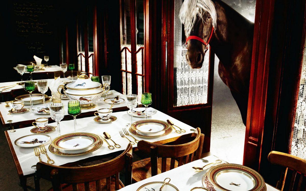 Фото бесплатно конь, морда, грива, столы, посуда, сервировка - на рабочий стол
