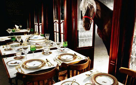 Фото бесплатно грива, столы, лошадь