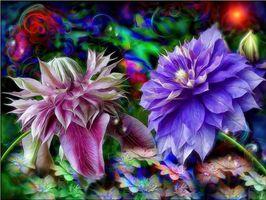Бесплатные фото абстракция,фон,текстуры,текстура,цветы