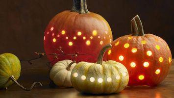 Бесплатные фото овощь,тыквы,отверстия,свет,веточка,хэллоуин