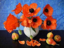 Бесплатные фото цветы,ваза,груши,маки,натюрморт