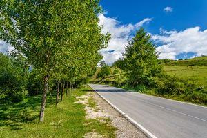 Фото бесплатно дорога, деревья, холмы
