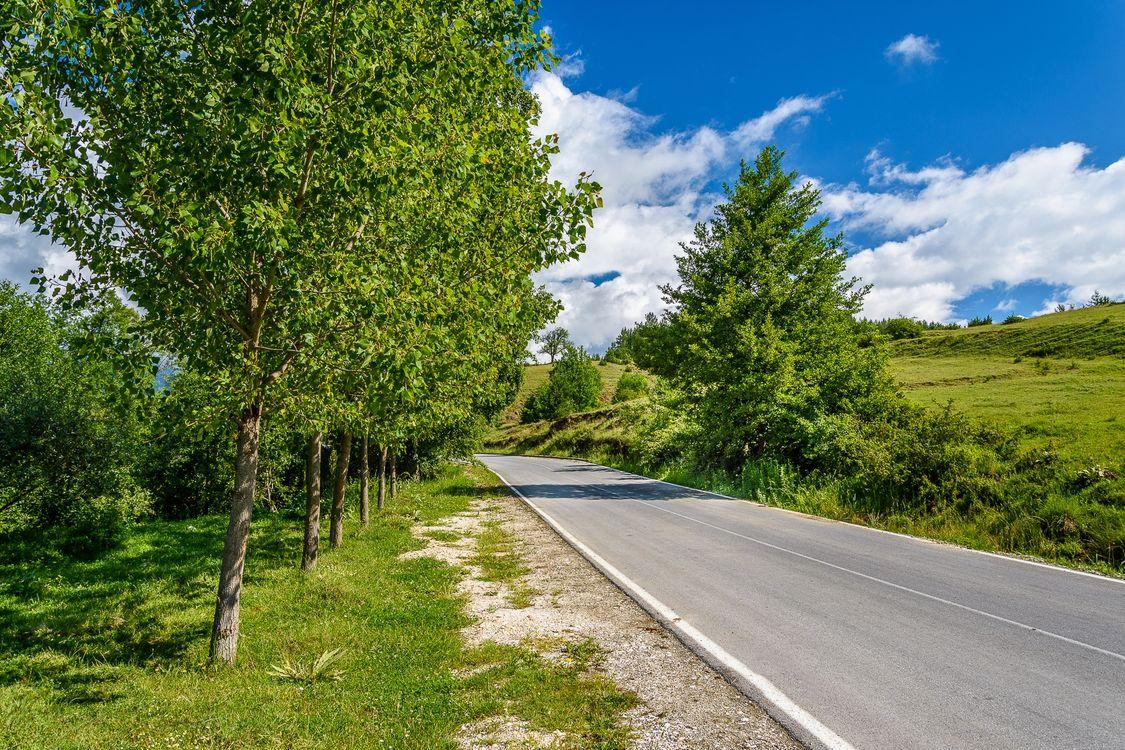 Фото бесплатно дорога, деревья, холмы, пейзаж - на рабочий стол