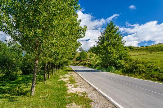 Photo free road, trees, hills