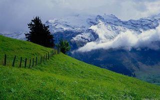 Фото бесплатно забор, снег, деревья