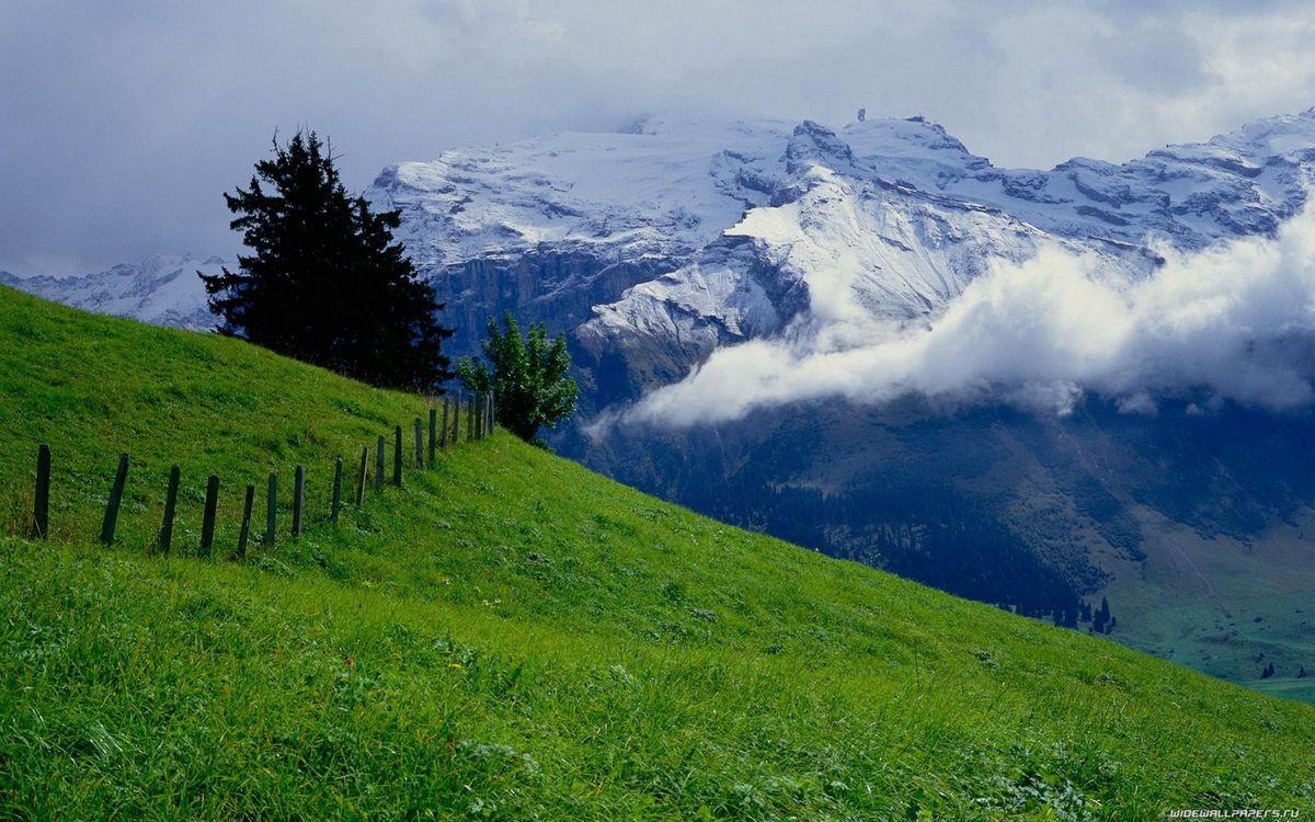 Фото бесплатно горы, снег, трава, ограда, деревья, облака, пейзажи