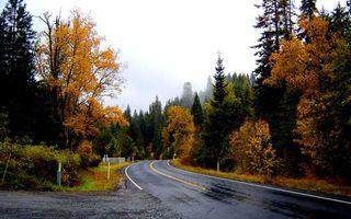 Фото бесплатно забор, асфальт, осень