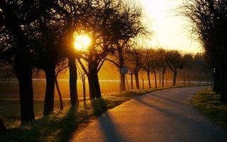 Бесплатные фото вечер,дорога,асфальт,обочина,деревья,солнце,закат