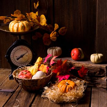 Beautiful photos on the theme of autumn leaves, autumn composition of vegetables and fruits