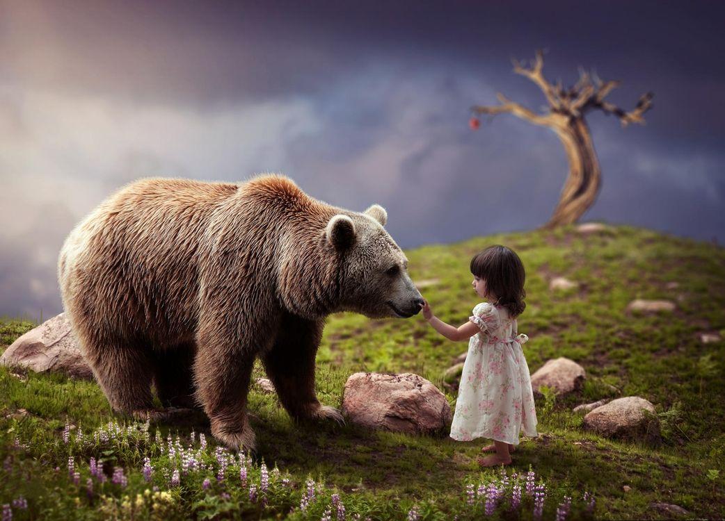 Фото бесплатно девочка, медведь, фантастика, фантастика