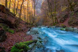 Фото бесплатно Каринтия, Австрия, река